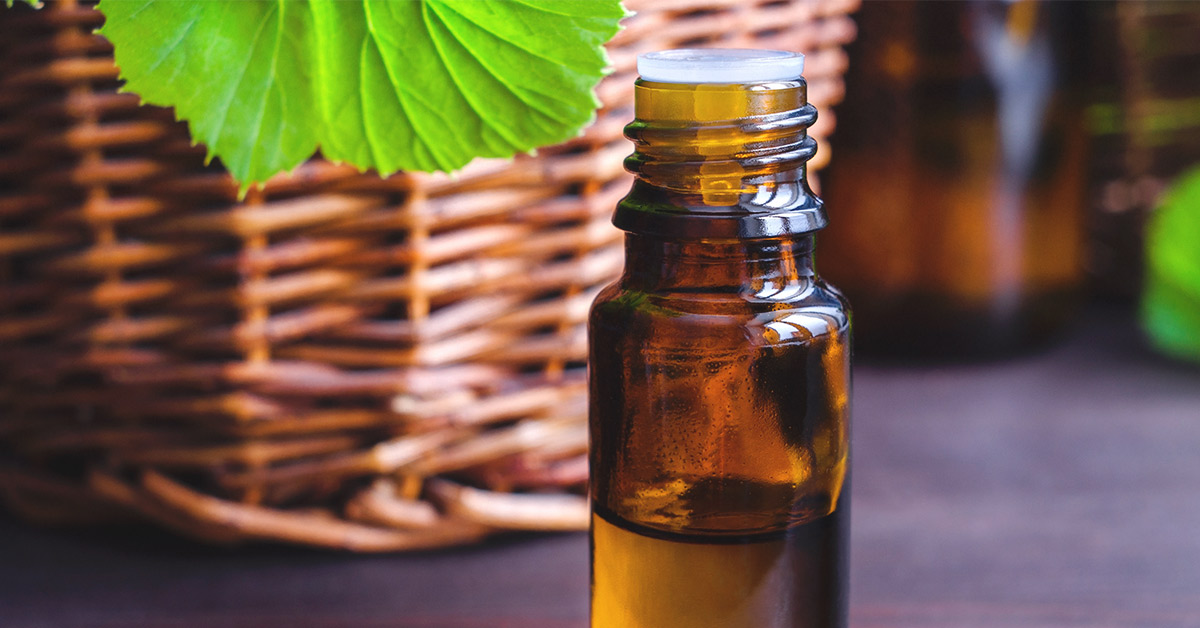 Geranium Oil Benefits, Side Effects, and Uses on Your Skin and More