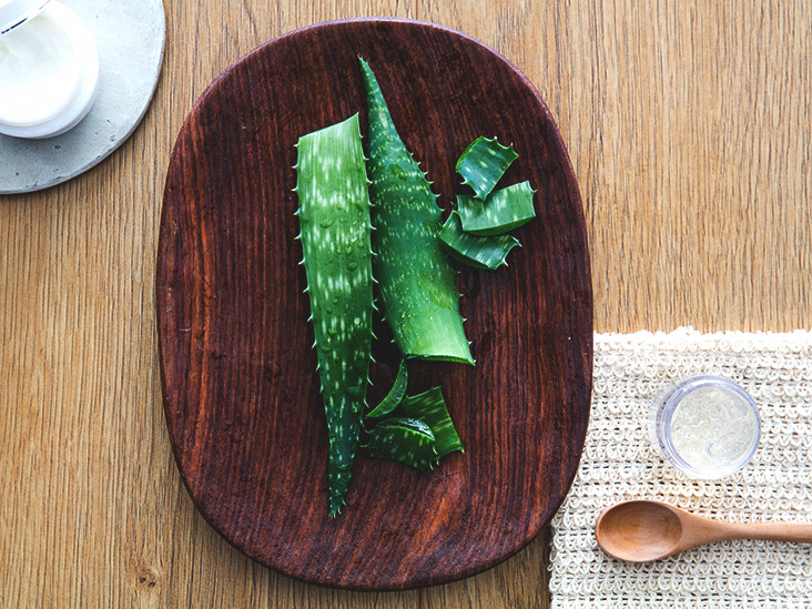 Is Aloe Vera an Effective Treatment for Diabetes?