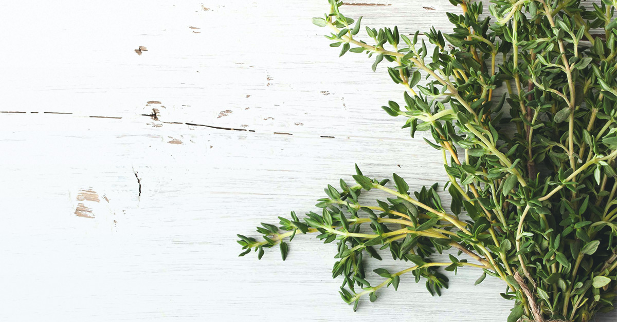 7 Uses and Benefits of Thyme Oil