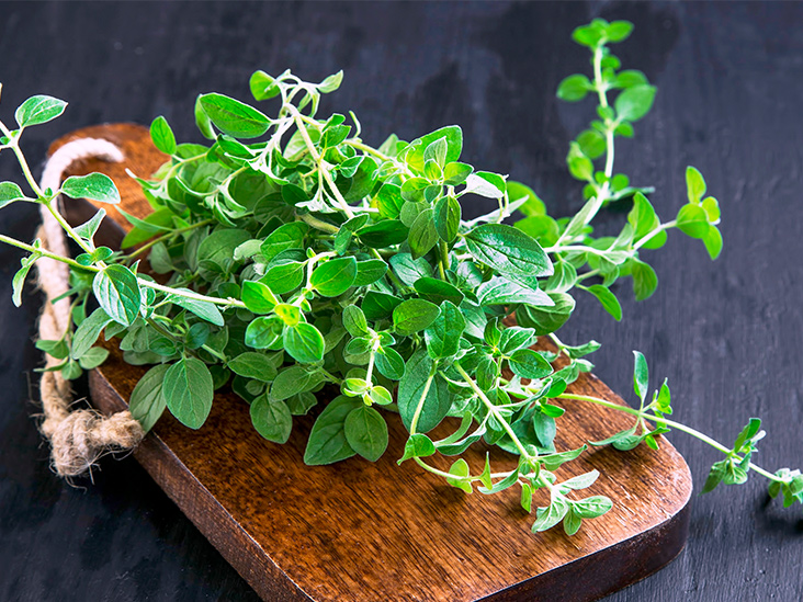15 Impressive Herbs with Antiviral Activity