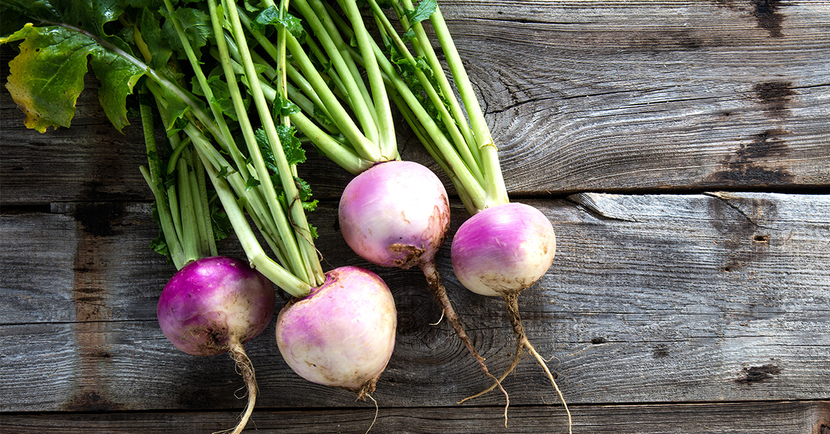 Turnips Nutrition Calories And Benefits