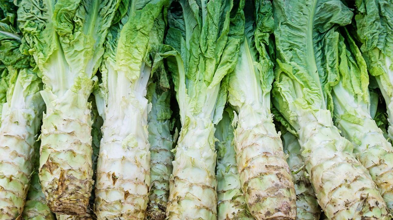 5 Interesting Types Of Lettuce