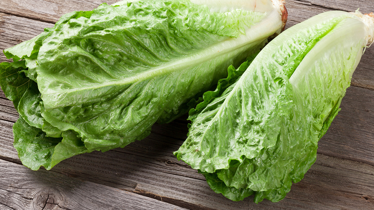 5 Interesting Types of Lettuce