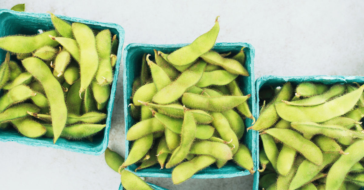 can you eat edamame on low carb diet