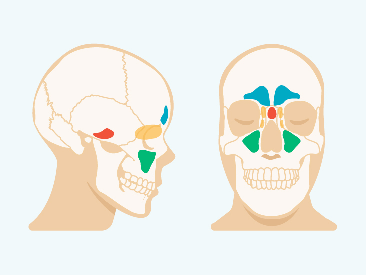 How To Stop Sinuses From Draining Down Your Throat