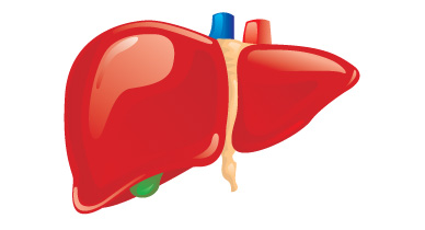 Hepatic Failure Causes Symptoms And More