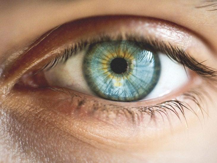 Different kinds of hazel eyes