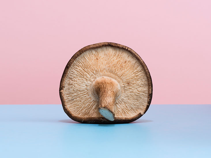 6 Mushrooms That Act As Turbo Shots For Your Immune System