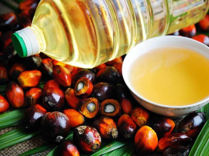 Palm Oil: Good or Bad?