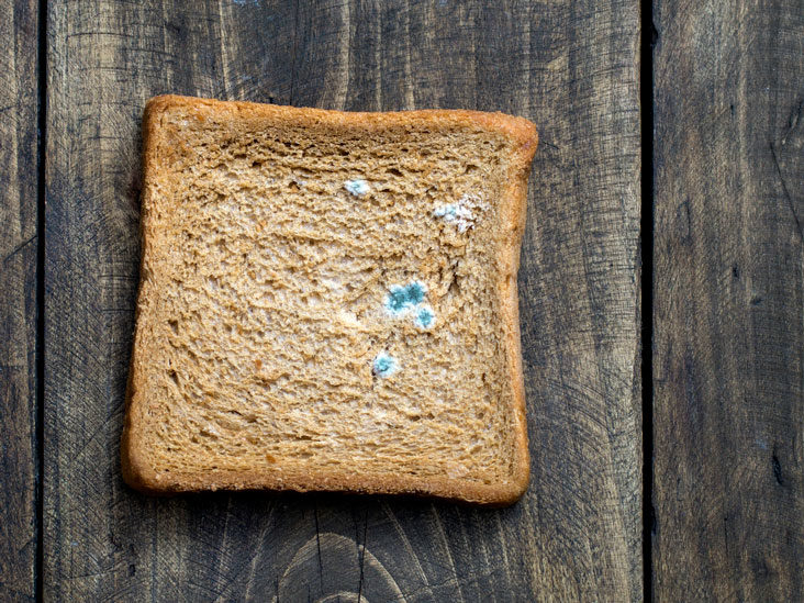 Is It Safe to Eat Moldy Bread?