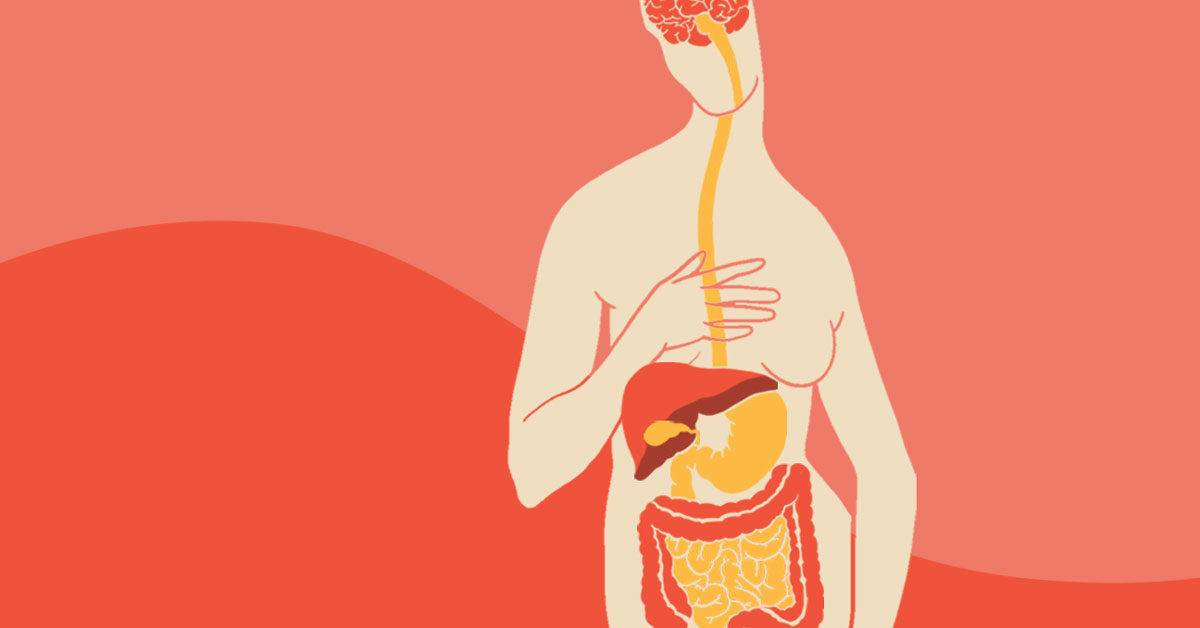 The Gut-Brain Connection: How it Works and The Role of Nutrition