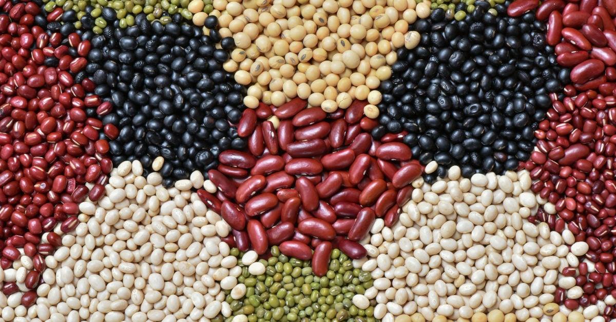 benegits of legumr free diet