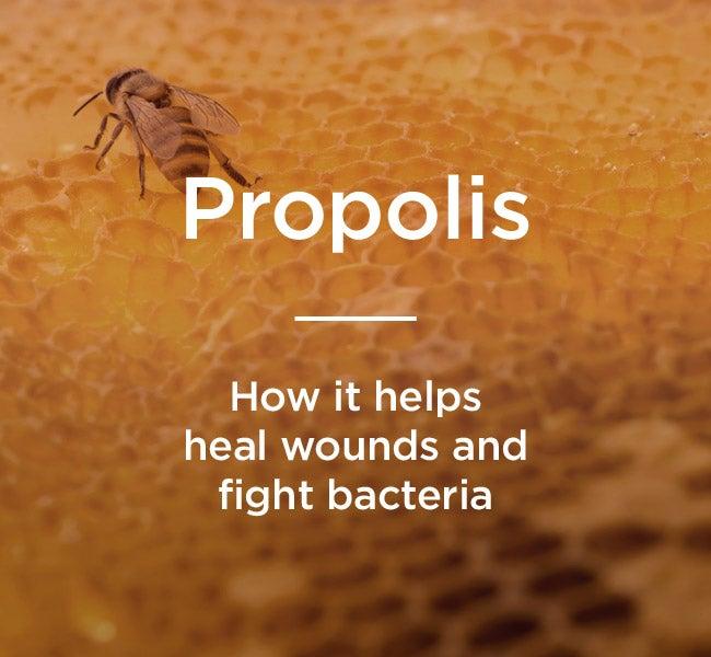 A prosztatitis gyógynövények népi gyógyszerek kezelése