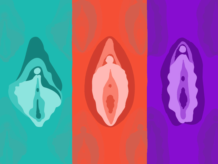 Clitoris Foto