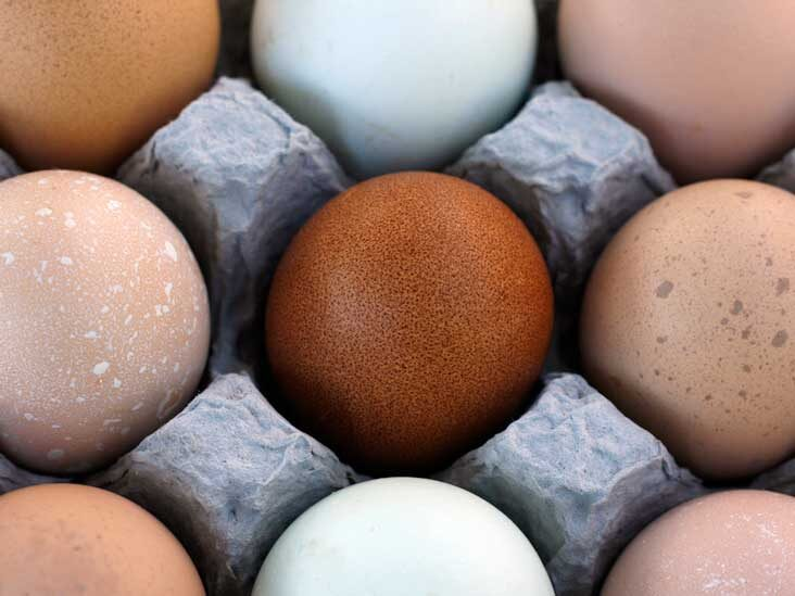 Brown vs. White Eggs — Is There a Difference?