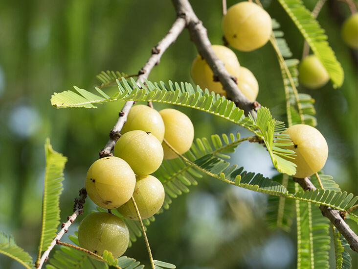 Indian Gooseberry: Benefits, Uses, and Side Effects