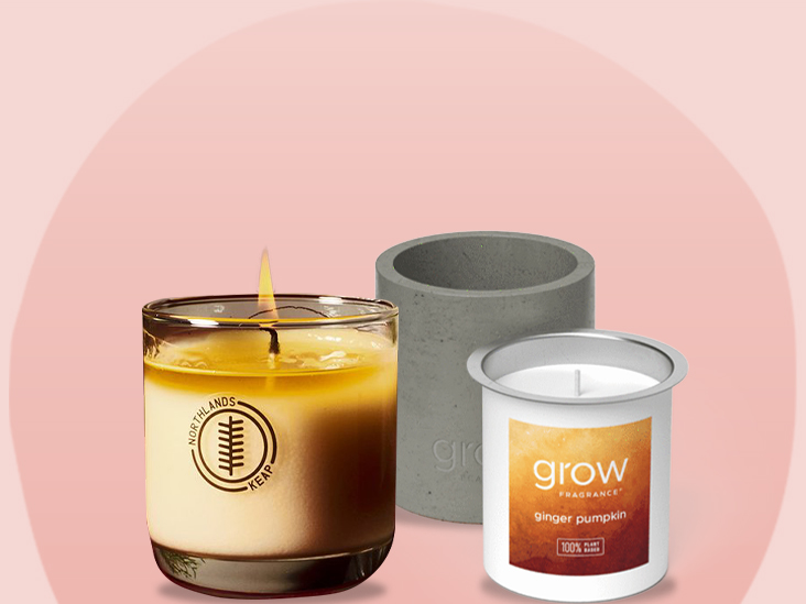Pick Your Size Tin White Tea /& Ginger Relaxing Clean Scent Soy Wax Tin Candle Circle Y Candles