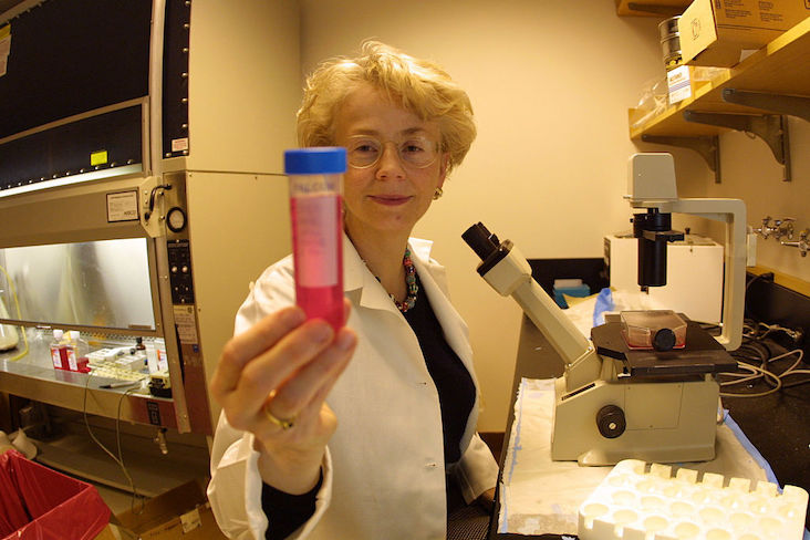 Dr. Faustman's Controversial Diabetes Cure Research Continues