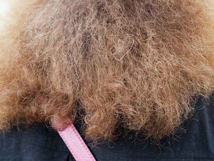 Surprising Causes of Frizzy Hair – and How to Combat It