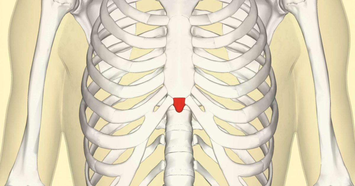 Xiphoid Process  Pain  Lump  And Removal