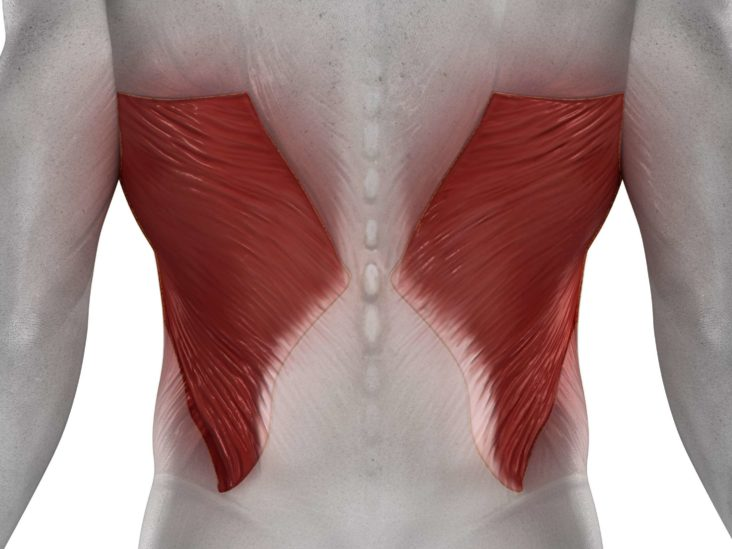 Waking Up With Lower Back Pain Causes And Treatment